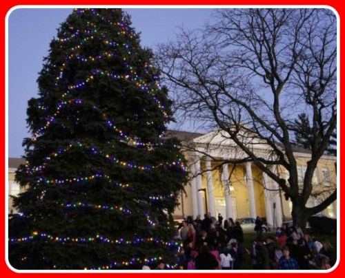 The Christmas tree at Town Hall, following a lighting ceremony.