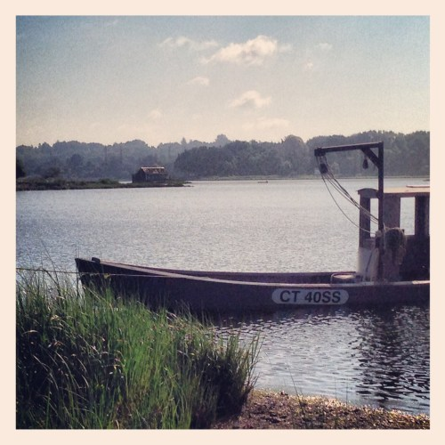 Sherwood Mill Pond - Betsy P Kahn