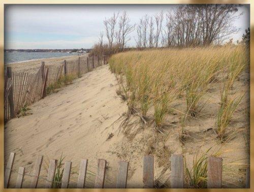 An East Coast beach with sand dunes, not parking.