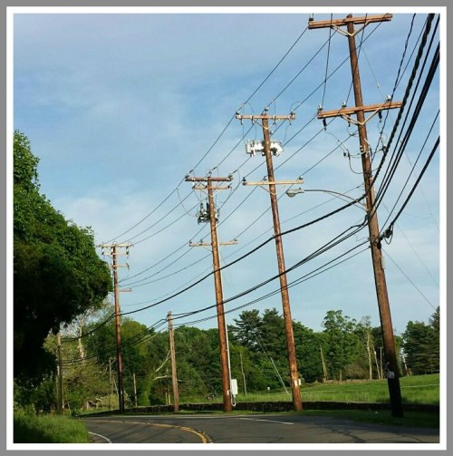 BIG telephone poles on Greens Farms Road.