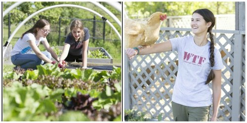Fun with plants and chickens, at Wakeman Town Farm. (Photo/Peter LaMastro - LincLine Photography)