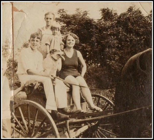 The Mills family, in a horse and buggy.