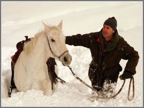 Handling horses in snow is one of Richard Wiese's many talents.
