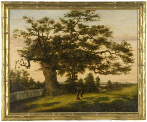 Connecticut's charter oak.