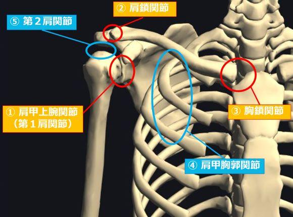 ebbd2d0bf0c9a30e17f4e533e17dd965 - 四十肩・五十肩の症状と原因|3つの時期に合わせたストレッチや運動方法を徹底解説!