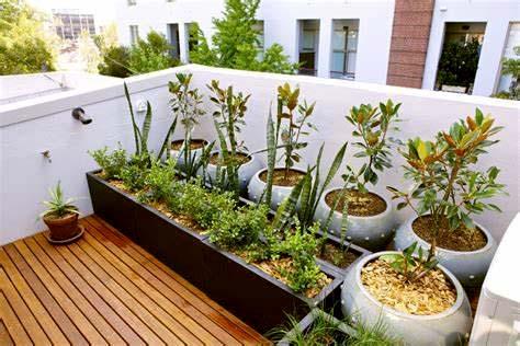 Desain Taman Minimalis Modern Rumah Type 36