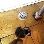 浴室排水孔 大量毛髮