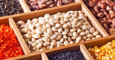 Maíz, frijol, arroz y trigo, los granos básicos de México