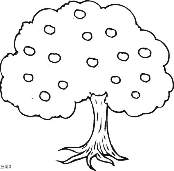 apple tree coloring pages 2015 2016 fashion trends 2015 2016