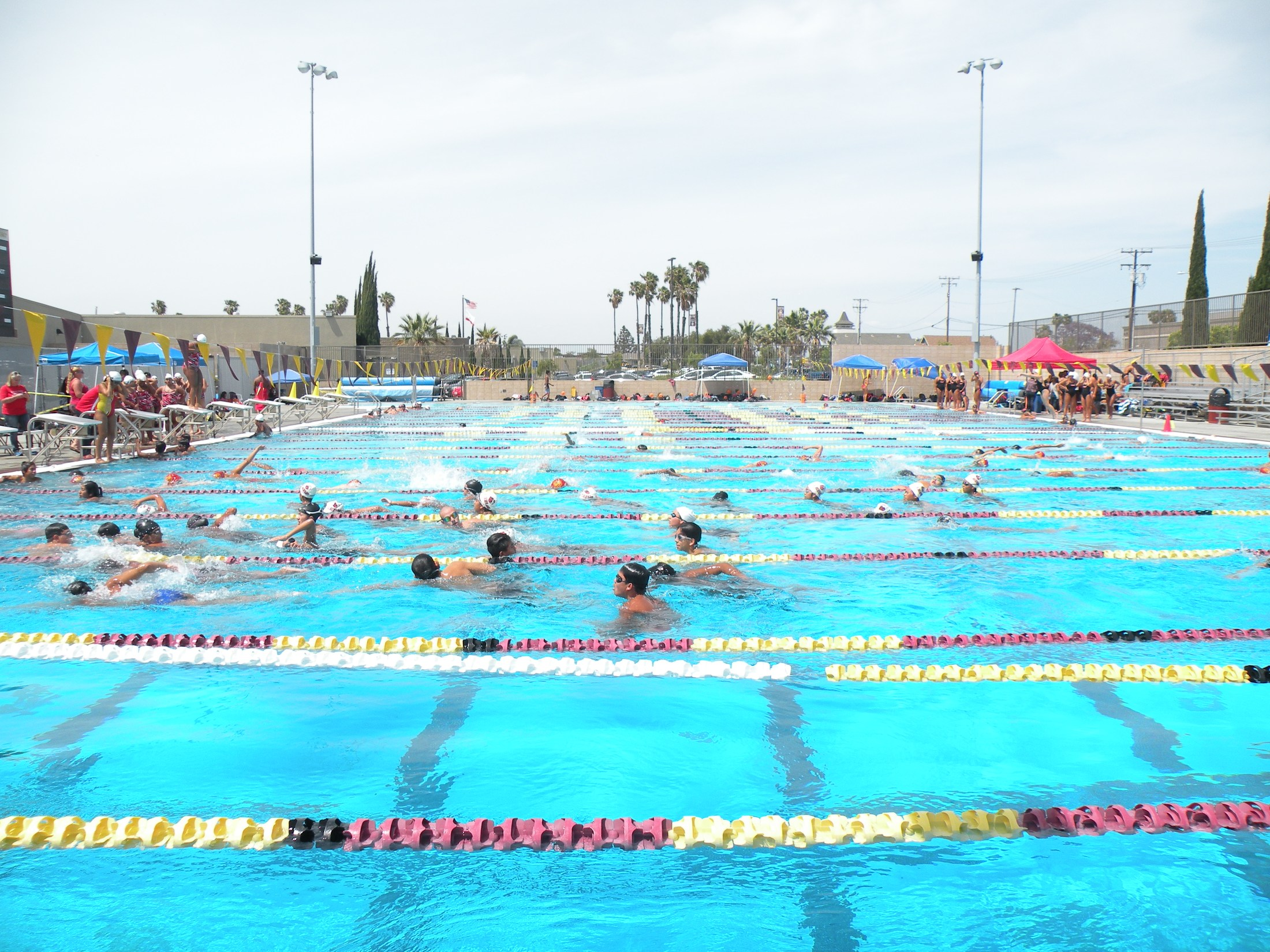 Swimming Swimming Ocean View High School
