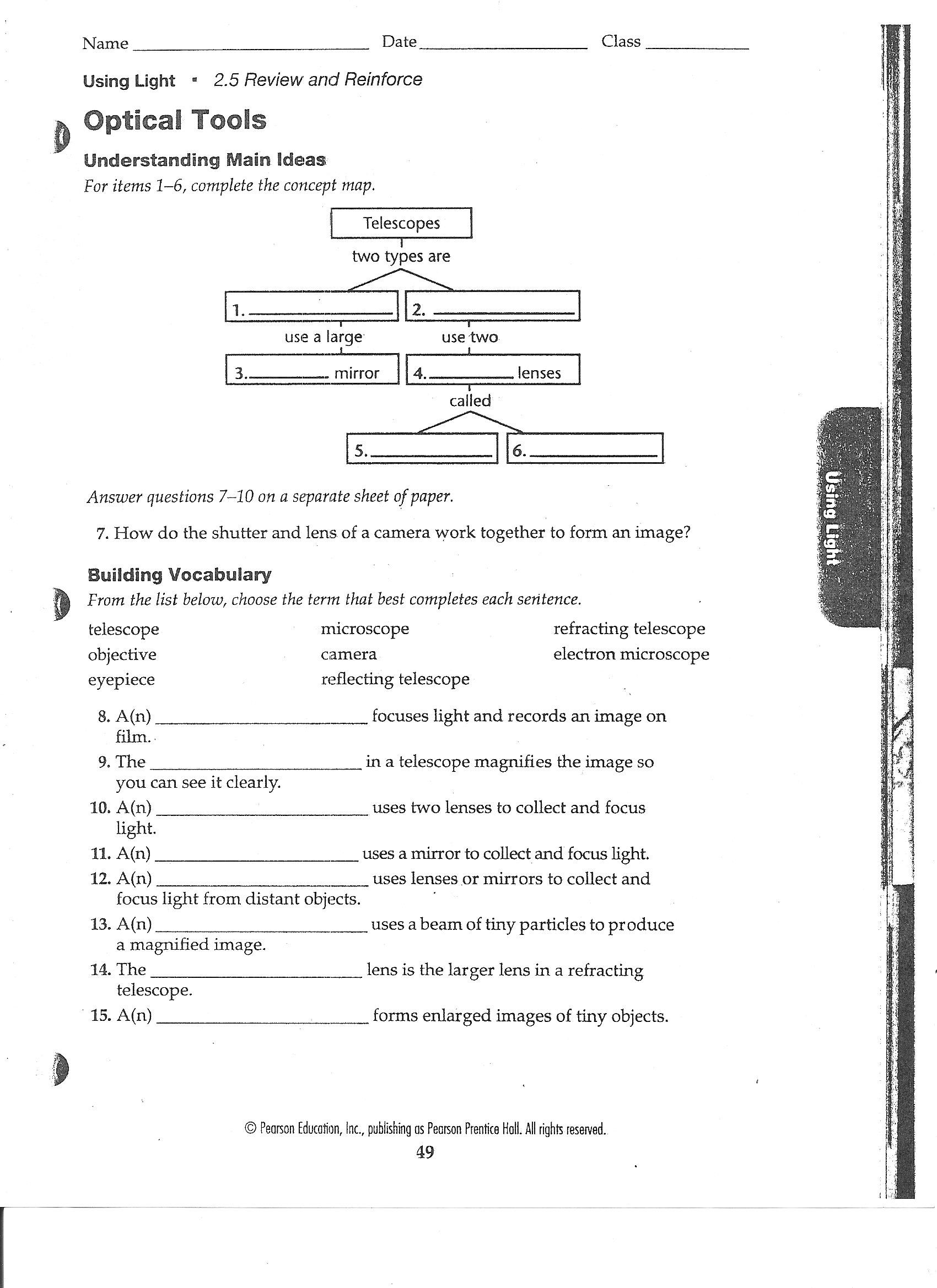 Looking Inside Cells Worksheet Answers