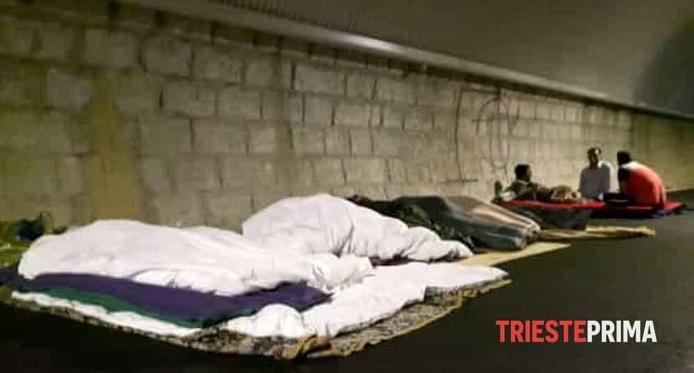 Migranti, Ziberna: «Galleria Bombi una vergogna per l'Italia»