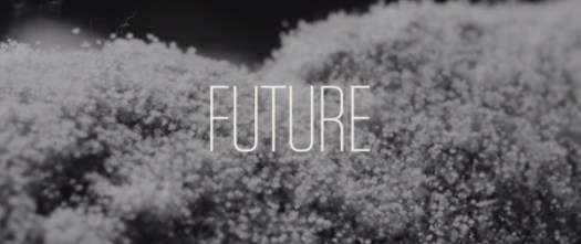 The Next Black: The Future of Clothing and Technology in technology style fashion Category