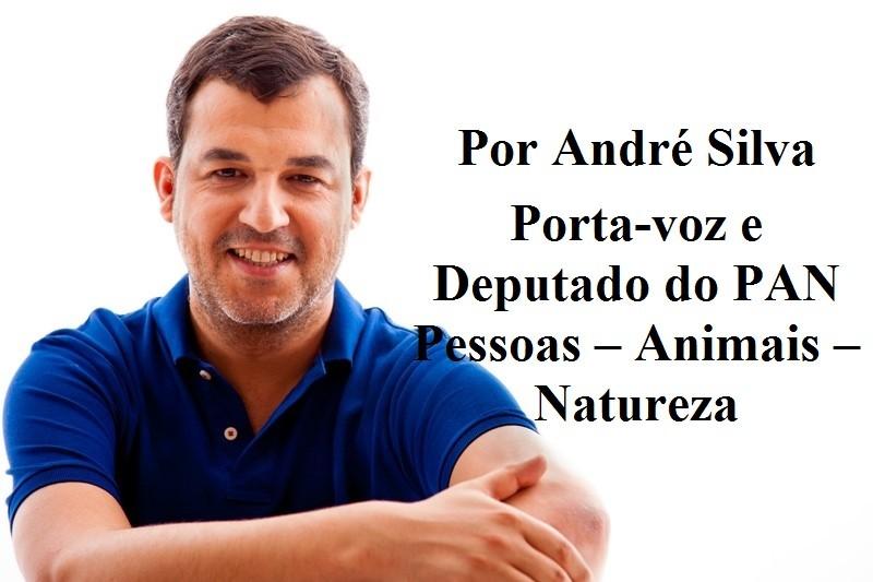 ANDRÉ- PAN.jpg