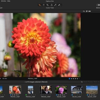Adobe Camera Raw vs. Capture One Express Fujifilm: A worthy free contender