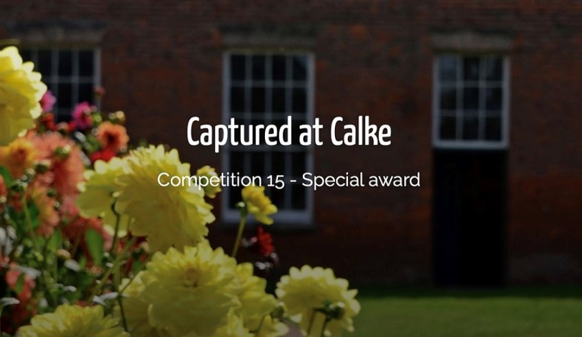 Slideshow: Winning photographs from the inaugural 'Captured at Calke' photo competition