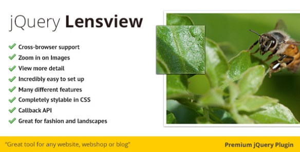 jQuery Lensview Plugin