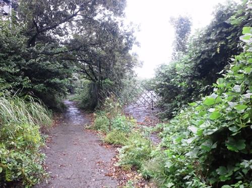 三浦「円海山」(大岡川の源流域)