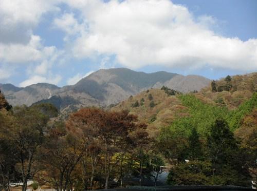 丹沢「大室山」(白石沢経由用木沢周回)