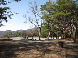 本栖湖オートキャンプ場
