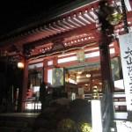 日本三百名山「大山」(ライトアップ紅葉見物)