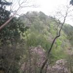 栃木「石裂山」(石裂山回遊登山コース)