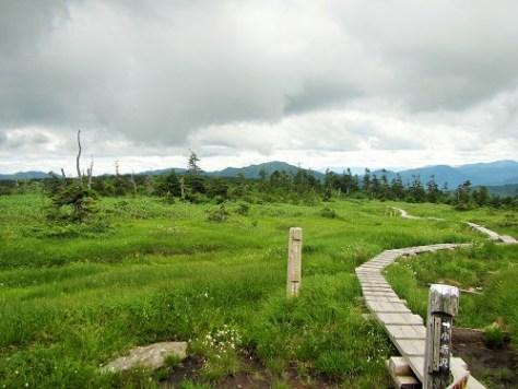 赤倉山分岐