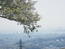 「大丸山」眺望