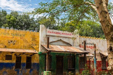 Harambe Market is Now Open https://1000000peoplewholovedisney.wordpress.com/2015/05/26/harambe-market-is-now-open/