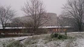 Aula Medica in snowy days