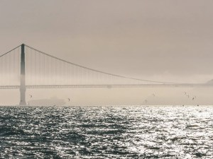 architecture, buildings, city, cityscape, downtown, landmark, landscape, panorama, san francisco, urban, usa, water
