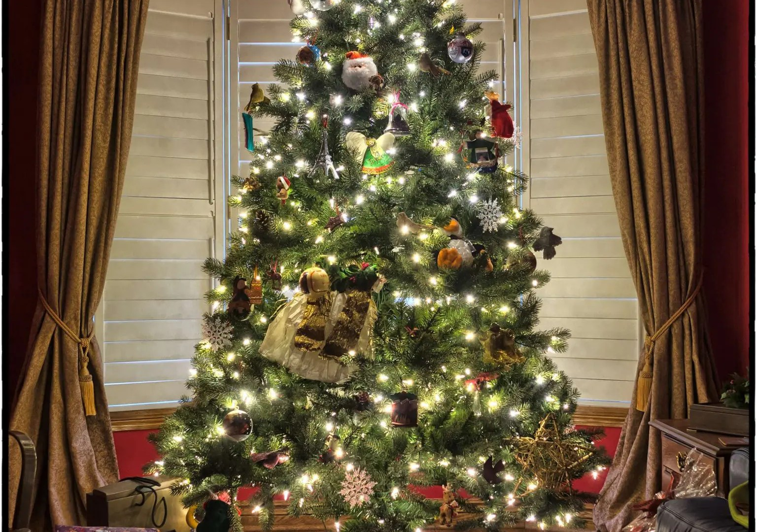 Creatively Unique Christmas Tree Photography Ideas 1