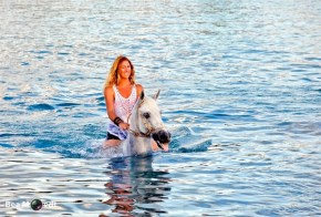 Swimming with Horses 2