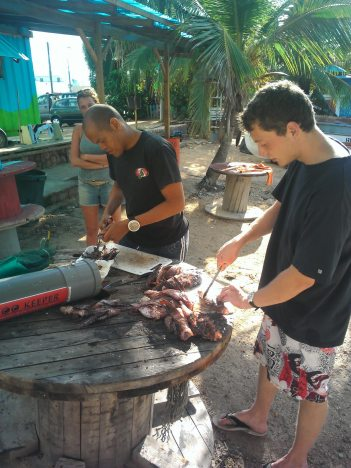 lionfish_twindivers
