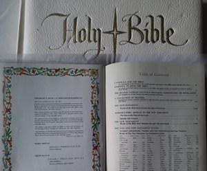 1000Butterflies.ca - bible
