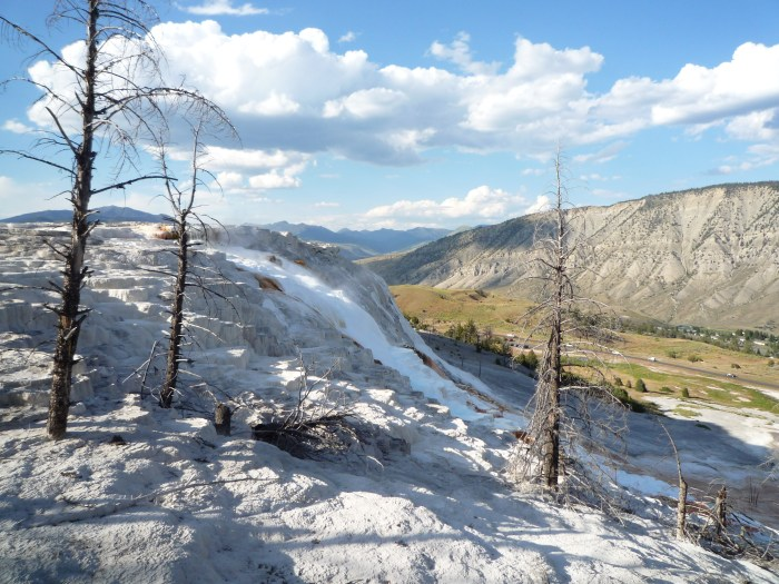 Ouest américain Yellowstone National Park Mammoth Hot Springs