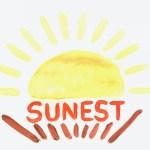 SUNEST PRESCHOOL & 子連れコワーキング