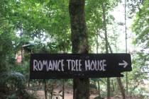 Romance Tree House