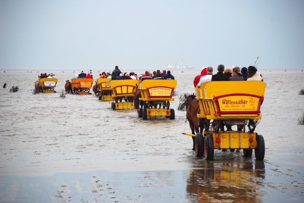Cuxhaven mud wagon