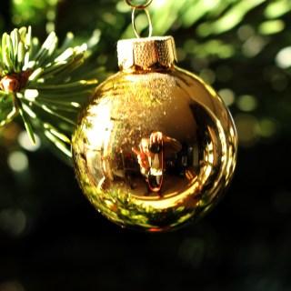 Week in Review – Christmas Week