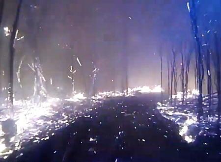 逃げ遅れた居住者を探すために荒れ狂う山火事の真っただ中に突入する消防車の車載映像がすごい。