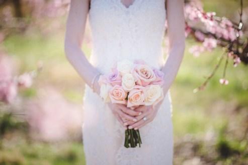 Bluemont Vineyard Wedding Virginia-73