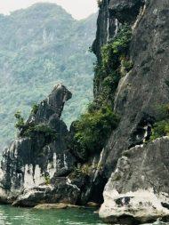 Stier Felsen Halong Bucht Vietnam