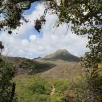 Curaçaos Top 5: Unerwartetes Curaçao