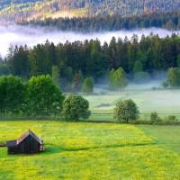 Der Sommer lockt zum Kurzurlaub in den Nördlichen Schwarzwald