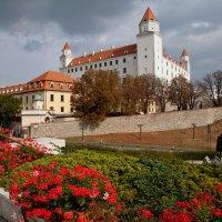 Bratislava – quirlig und bunt