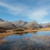 Nationalpark-Streifzüge im Defereggental