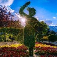 Das Meraner Flower Festival geht in die dritte Runde