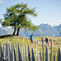 Ab auf die Alm in der Ferienregion Gitschberg Jochtal