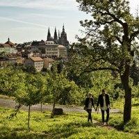 Beliebte Hotspots und tolle Geheimtipps der Tschechen